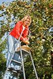 选妇女的苹果 免版税库存照片