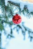 选拔在一个积雪的分支的红色圣诞节装饰品在wo 图库摄影