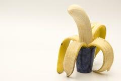 选拔在白色的开放香蕉 免版税库存图片