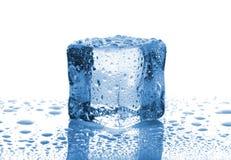 选拔熔化冰块 免版税库存照片