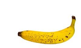 选拔生物有机香蕉照片隔绝有白色背景 免版税库存图片