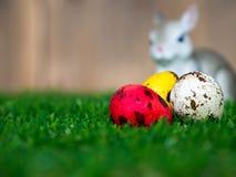 选择五颜六色的复活节彩蛋的焦点 安置在绿草 有一只逗人喜爱的兔子在后面 后面是一个棕色木框架 T 免版税库存照片