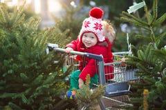 选择圣诞树的孩子 Xmas礼物购物 图库摄影
