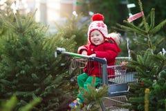 选择圣诞树的孩子 Xmas礼物购物 库存照片