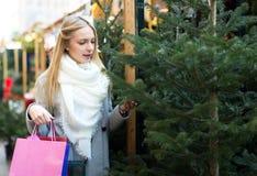 选择圣诞节的金发碧眼的女人一棵冷杉 免版税库存图片