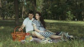 选择在野餐的异想天开的孕妇果子 股票视频