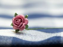 选择焦点在桃红色人造花 在蓝色布料条纹由纸制成和安置的桃红色人造花 免版税库存照片