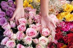 选择玫瑰的妇女在束外面 免版税库存照片