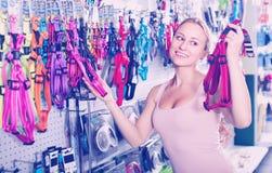 选择皮带的妇女 免版税库存照片