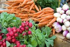 选择蔬菜 免版税库存图片