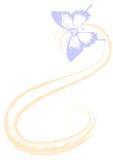 透亮的蝴蝶 图象适用于背景 免版税库存图片