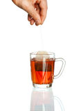 透明杯子的茶 免版税库存照片
