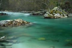透明河 库存照片