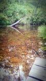 透明的反射Deptford河 免版税库存照片
