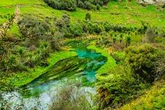 透明的小河 库存图片