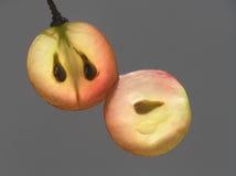 透明的葡萄 免版税图库摄影