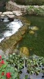 透明的水瀑布 库存照片