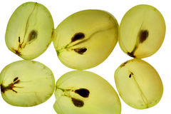 透明背景的葡萄 免版税库存照片