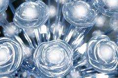 透明蓝色玻璃辉光灯轻的玫瑰 库存照片