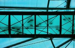 透明蓝色的桥梁 库存照片
