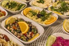透视传统鲜美开胃菜特写镜头射击raki土耳其饮料的在夜晚餐的在伊兹密尔在土耳其 库存照片
