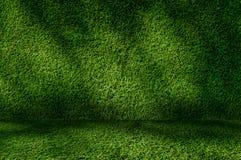 透视草绿色墙壁和地板内部背景 图库摄影