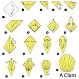 逐步的指示如何做origami蛤蜊 免版税图库摄影