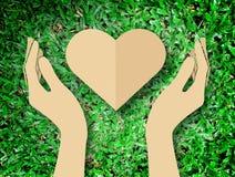 递举行心脏爱自然标志草背景 免版税图库摄影