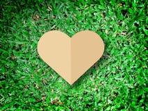 递举行心脏爱自然标志草背景 免版税库存图片