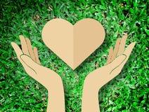 递举行心脏爱自然标志草背景 免版税库存照片