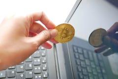 递举行cryptocurrency从膝上型计算机屏幕的金黄bitcoin硬币 库存图片