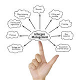 递变态反应原管理的文字元素企业概念的 免版税库存照片