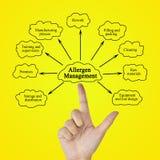 递变态反应原管理的文字元素企业概念的 免版税库存图片