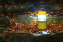 递在湿石台阶的灯笼有干燥叶子的 库存照片