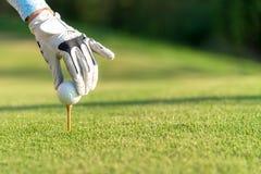 递把高尔夫球放的亚裔妇女在与俱乐部的发球区域上在高尔夫球场在健康体育的晴天 免版税图库摄影