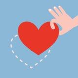 递拾起在蓝色背景的红色心脏 免版税库存照片