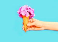 递拿着与花的冰淇凌在蓝色背景 库存图片