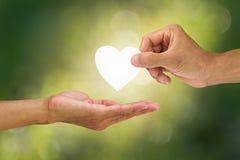 递拿着和给白色心脏接受在被弄脏的绿色bokeh背景的手 库存图片