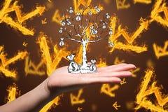 递拿着在灼烧的图表背景的金钱树 库存照片