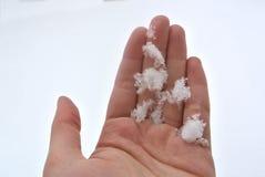 递拿着在白色雪背景的雪花剪影 免版税库存照片