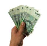递拿着在纸币和硬币的金钱波兰兹罗提 免版税库存图片
