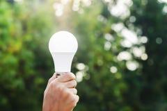 递拿着在绿色自然背景和阳光的被带领的电灯泡 库存图片