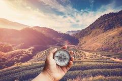 递拿着指南针nad茶领域和日出葡萄酒在mornin 免版税库存图片