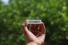 递拿着木忠心于词`对此的12月` 库存图片