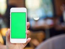 递有绿色屏幕的举行智能手机在咖啡店 免版税库存图片