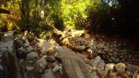 递点到废墟和一条小运河在森林里,两一千年老城市Olympos Lycia, Lycian足迹 股票录像