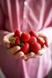 递草莓 库存图片