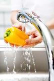 递蔬菜洗涤物 免版税图库摄影