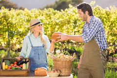 递面包的愉快的农夫夫妇 库存照片