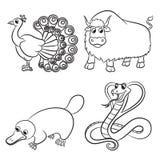 逗人喜爱动物的收藏 免版税库存图片